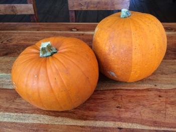Hallween pumpkins